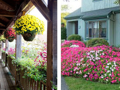 7 Tips To Up Your Curb Appeal